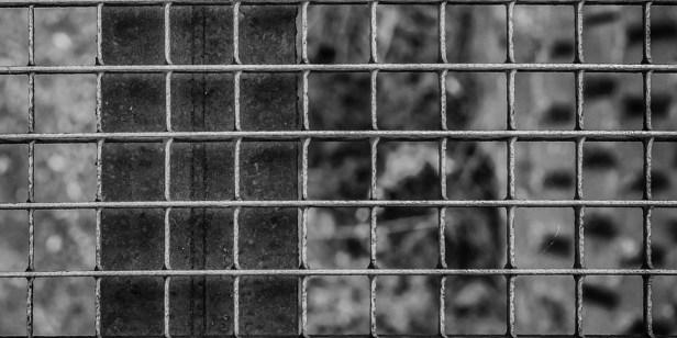 grid-1709851_960_720.jpg