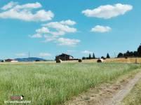 Immagine tratta da repertorio di Onda Lucana by Franco Vaccaro.jpg02