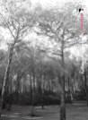 Immagine tratta da repertorio di Onda Lucana® by Antonio Prudente