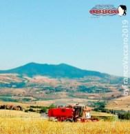 Immagine tratta da repertorio di Onda Lucana®by Franco Vaccaro 2019 La mietitura nel Vulture 01