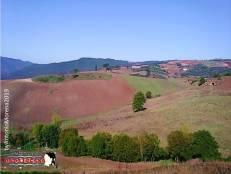 Immagine tratta da repertorio di Onda Lucana®by©Antonio Morena 2019 Atella panorama