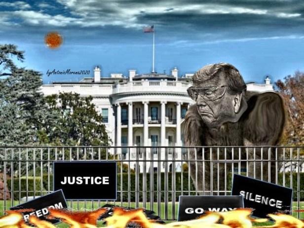 Trump 2020 Way.jpg2.jpgfirma