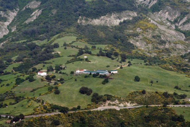 Azienda-Tosa-1024x683