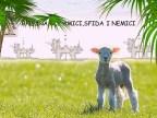 DOMENICA DELLE PALME 2017 DA ONDA LUCANA (2)