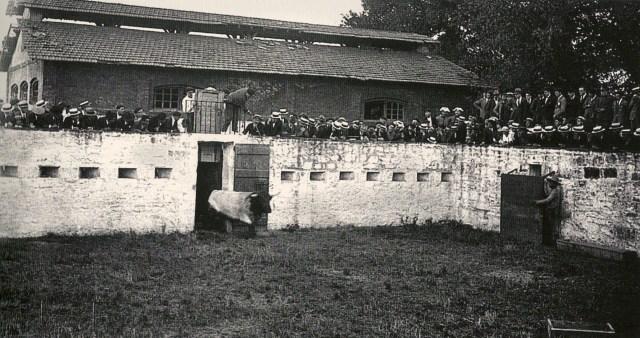 Fig. 6 Años 20. La nave principal abandonada y los corrales. Foto L. Rouzaut