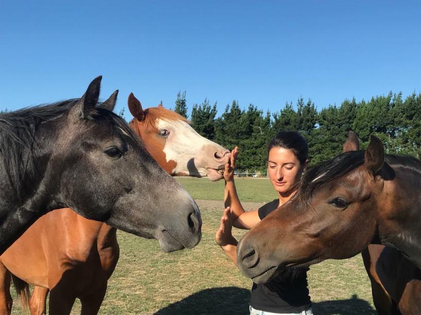 femme avec ses mains devant des têtes de chevaux