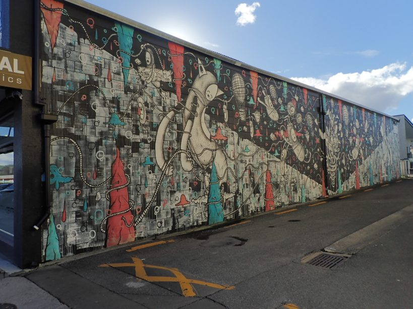 entire wall painted cracked ink taupo new zealand