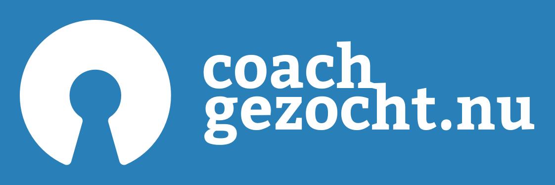 Logo variant 1