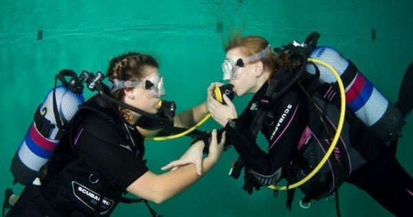 Duikopleidingen - Nederlandse Onderwatersport Bond