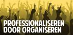 Professionaliseren door organiseren The Crowd vives_visual