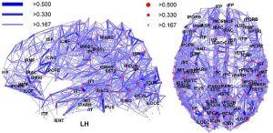 Bewusstsein aus Sicht der Neuropsychologie