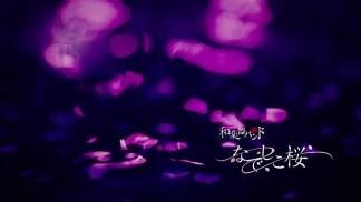 なでしこ桜.mp4_snapshot_00.02_[2016.03.21_23.48.51]