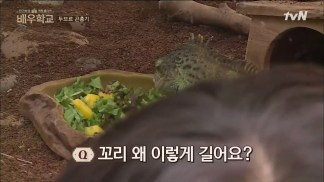 [tvN] 배우학교.E07.160317.HDTV.H264.720p-WITH.mp4_snapshot_20.01_[2016.03.17_22.20.03]