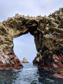 Isla Ballestas-Paracas, Peru