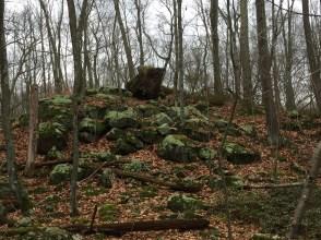 Devils Den Hike