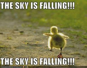 You're cute, but you're wrong, The Sky is NOT Falling.