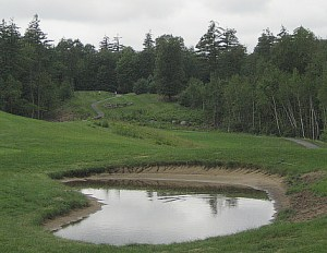 Please explain why the golfer should be penalized because the course is too cheap to make sure the bunkers drain properly?