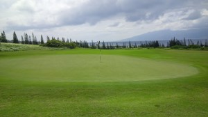 The greens on Maui were generally large, severely undulating, and subject to The Grain.