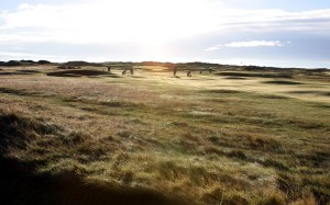 Could the natural beauty of the grasses surrounding Carnoustie ever really rise above a novelty in the United States?   That would be a lot of rough that no longer gets mowed.