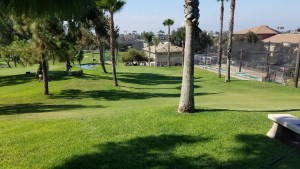 View of the home hole at Colina Park G.C.