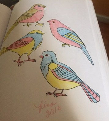 Four birds in a coloring book