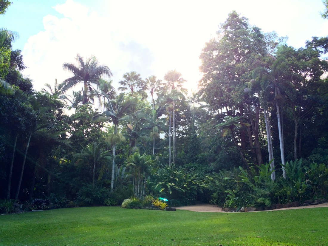 Cairns Botanic Gardens, Australia