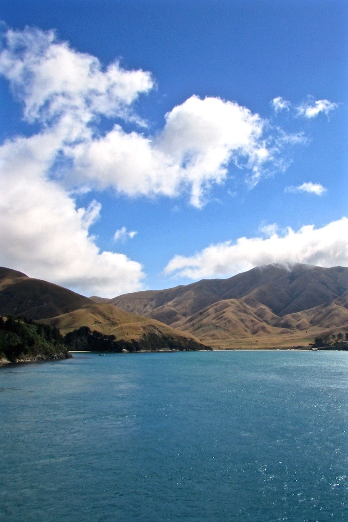 New Zealand Ferry Featured Image