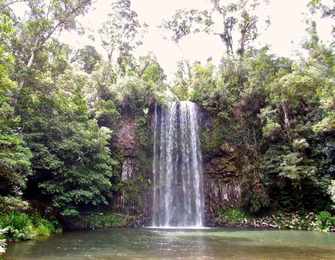 Millaa Millaa Falls East Coast Australia