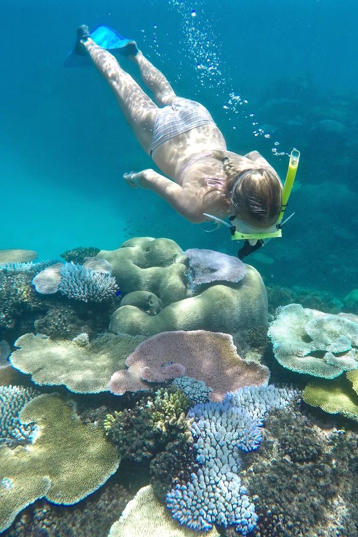Escape to: Octopus Resort in Fiji