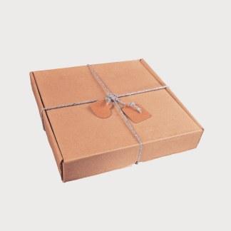 express postal box