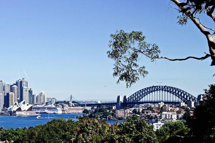 Sydney Views | Sydney Taronga Zoo