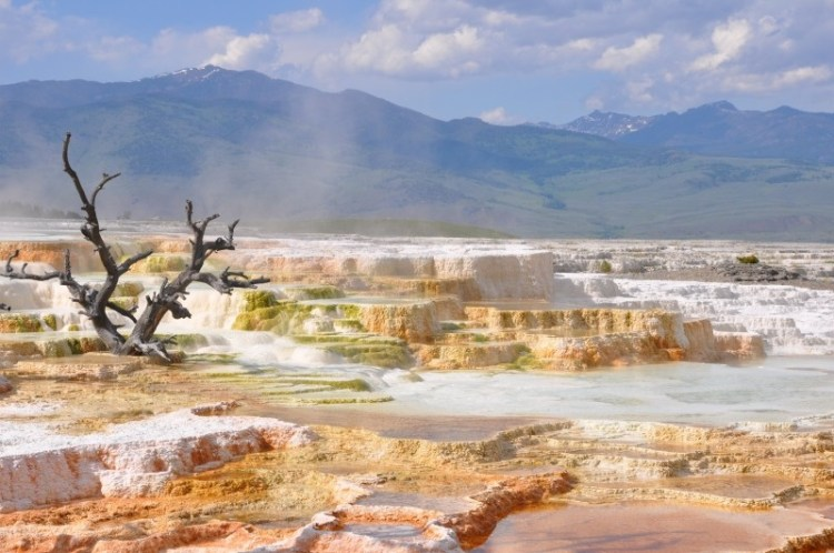 thermal-hot-springs-yellowstone-landscape