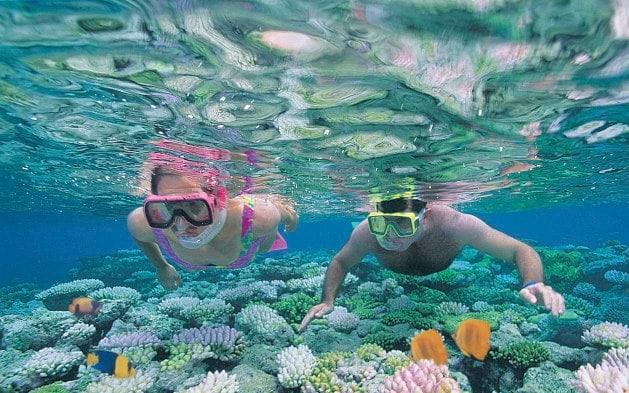 Cairns Top 5: Great Barrier Reef
