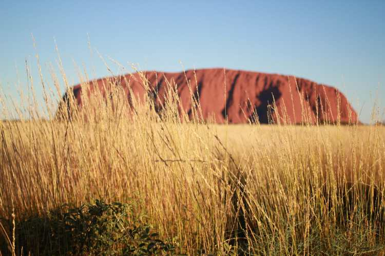 Uluru 3 Day Tours in outback