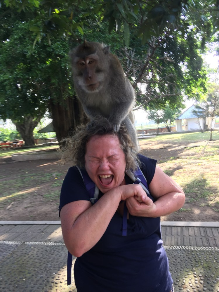 monkey attacking in bali