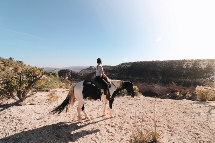 Zion Canyon Horseback Riding at Zion Mountain Ranch | Zion National Park Horseback Riding