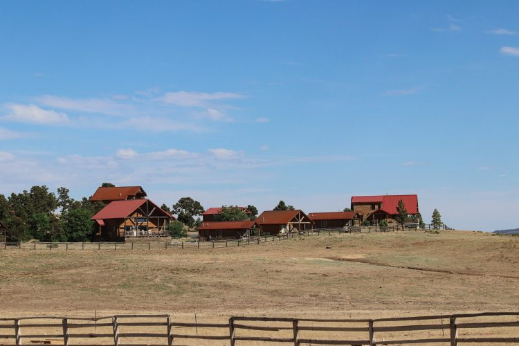 zion mountain ranch - pasture