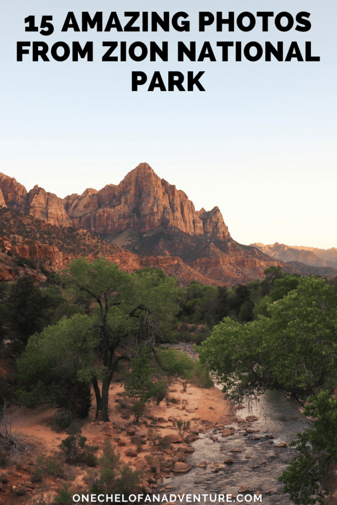 15 Amazing Photos from Zion National Park in Utah
