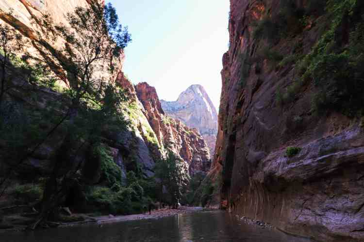 Hiking The Narrows - Zion National Park-6866