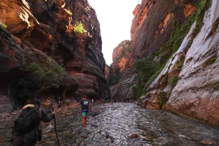 Hiking The Narrows - Zion National Park-6872