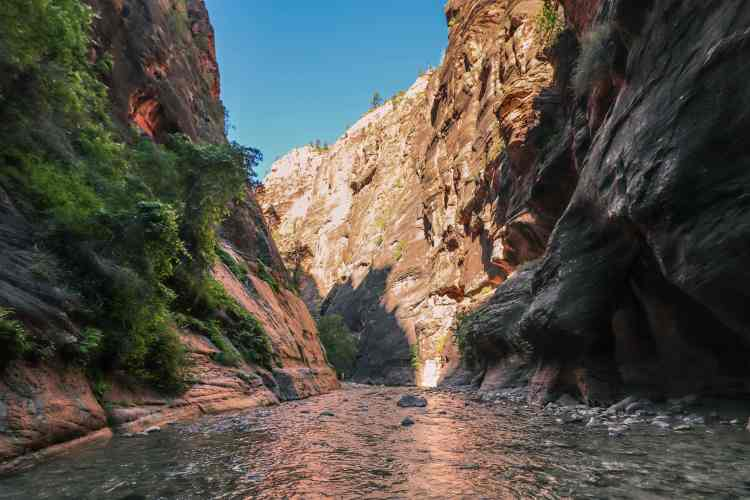 Hiking The Narrows - Zion National Park-6877