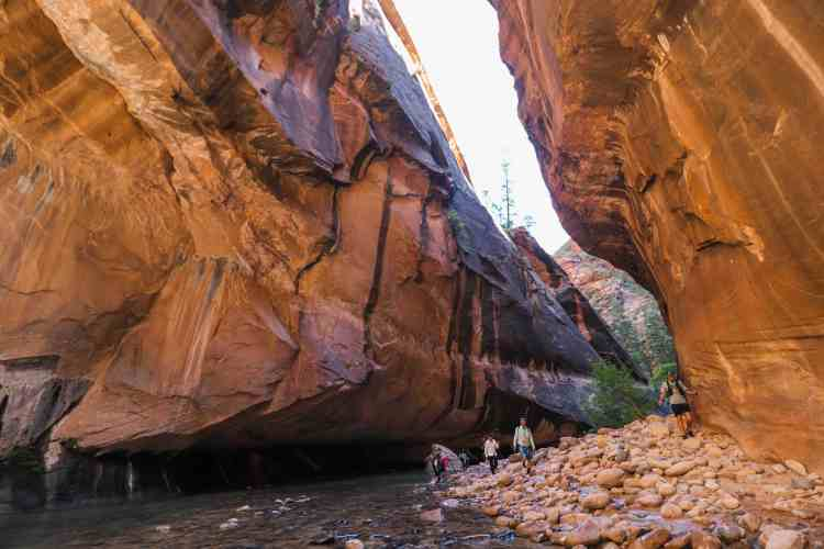 What to Expect When Hiking The Narrows in Zion National Park