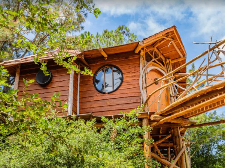 Hobbit Treehouse in Texas
