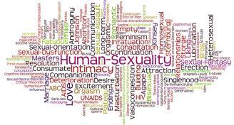 Human sexuality wordle