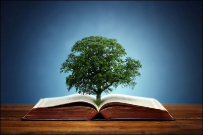 A tree steming from a book