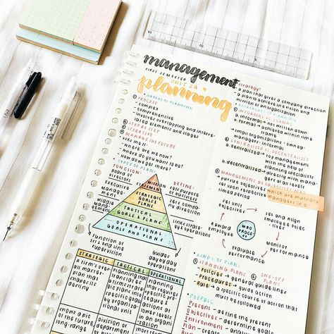 A sheet of study notes on management and planning