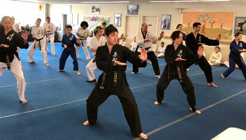 Martial artists training