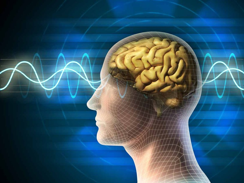 Picture of the brain and brainwaves