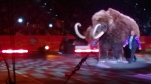 "A ""woolly mammoth"""
