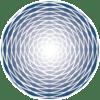 Spirale ODT solo logo Blu Navy 72DPI